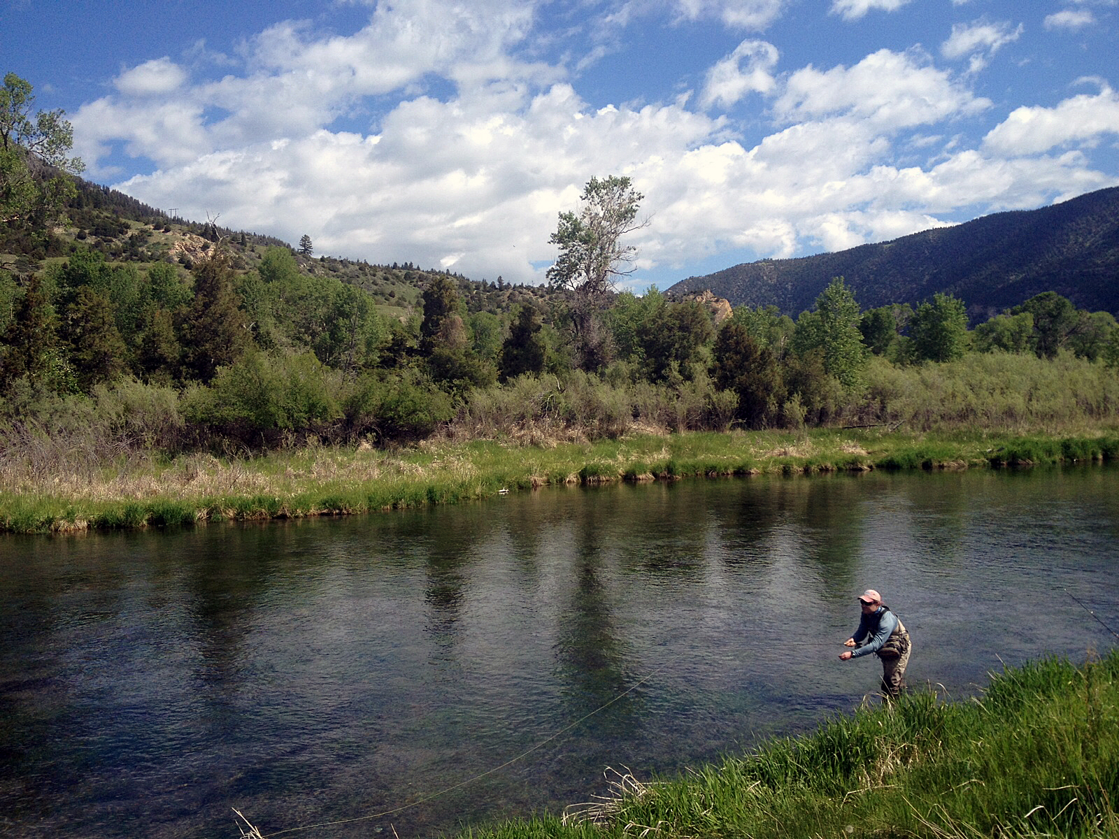 fish depuy 39 s spring creek with sweetwater fly shop